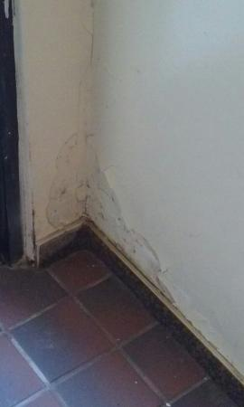 Grover Beach, CA: Found this hole in the lobby womens bathroom I showed it to  manager Sam Miller nothing was done