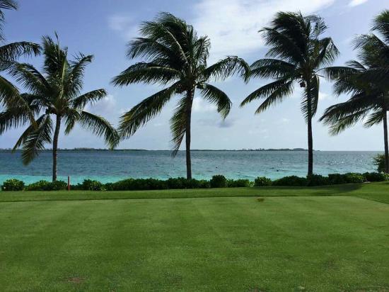 Ocean Club Golf Course : FB_IMG_1438387912174_large.jpg