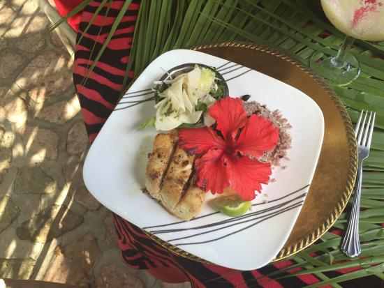 Maskall, Belize: Excelente comida, un lugar para venir de descanso, esta es la tortura de  venir por negocios no
