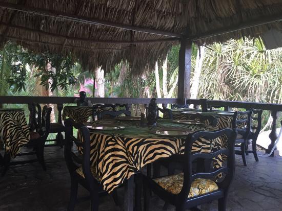 ماروبا ريزورت جانجل سبا: Excelente comida, un lugar para venir de descanso, esta es la tortura de  venir por negocios no 