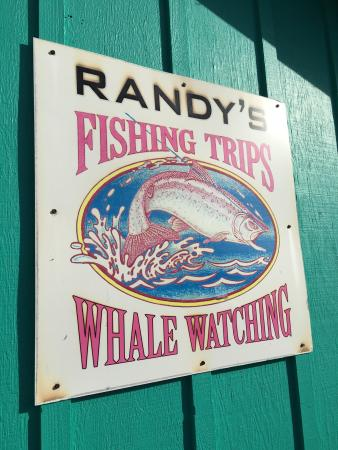 Randy 39 s fishing trips and whale watching trips for Randys fishing trips
