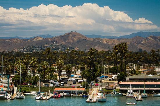 Ventura Harbor & Two Trees