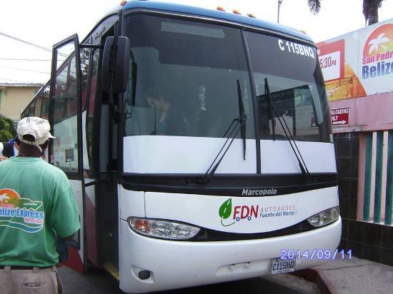 Zippy Zappy Mayan Travels