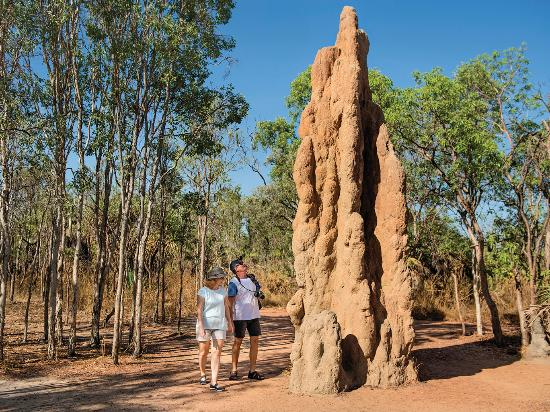 Darwin, Australia: Termite Mounds, Litchfield National Park