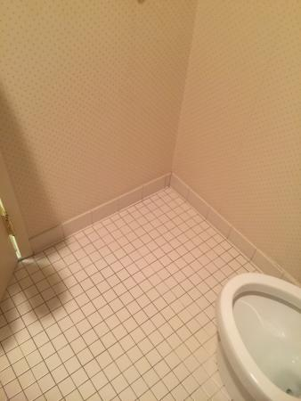 Ashmore Inn and Suites : photo3.jpg