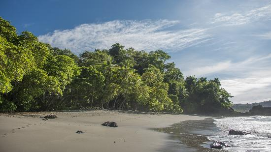 Arenas del Mar Beachfront and Rainforest Resort, Manuel Antonio, Costa Rica: The playitas beach is completely private when the tide is up