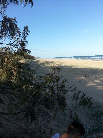 Peregian Beach, Australia: PaperArtistOriginal_2016-01-18_18-30-03_large.jpg
