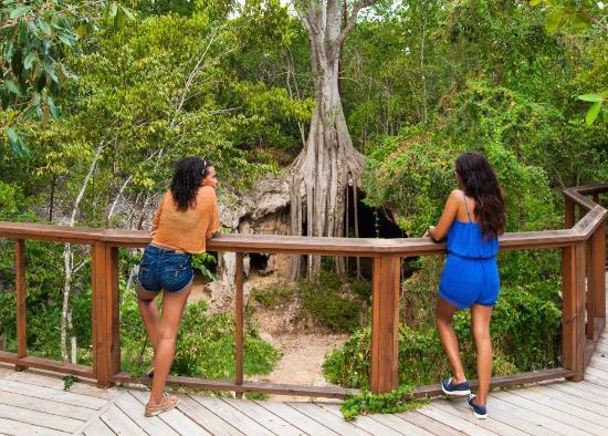 George Town, Gran Caimán: Crystal Cave Safari8