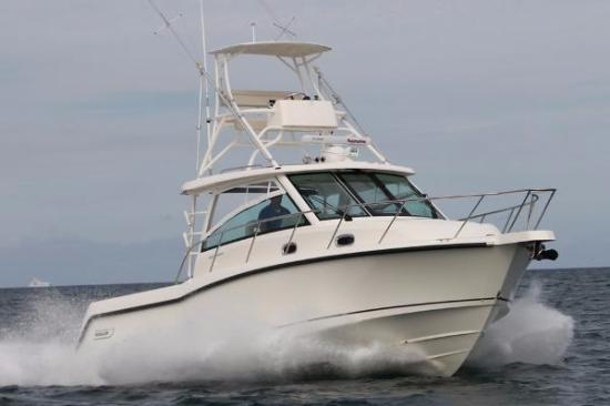 Beach Quarters Resort: Deep sea fishing boats available for charter near the resort