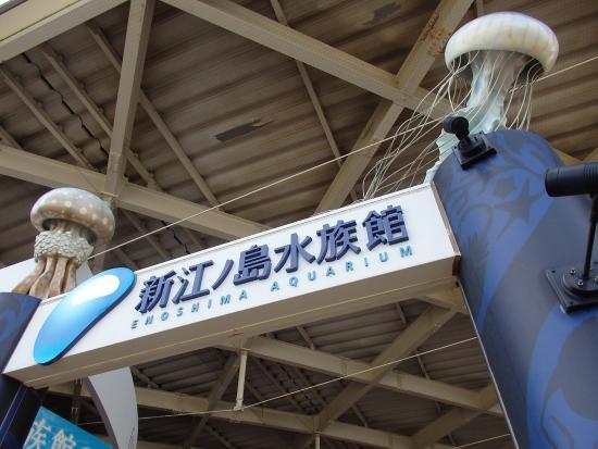 写真新江ノ島水族館枚