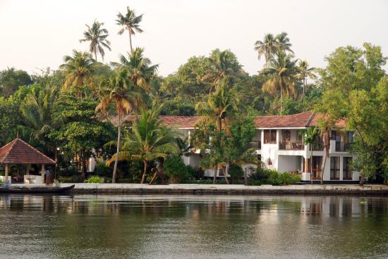 Purity at Lake Vembanad Foto