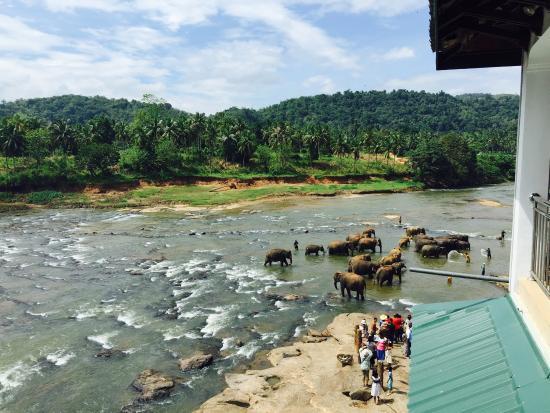Hotel Elephant Park: photo1.jpg