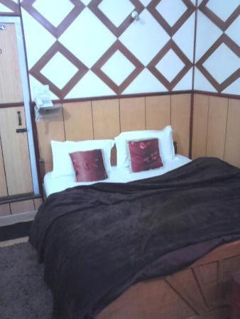 Ashok Hotel : Room