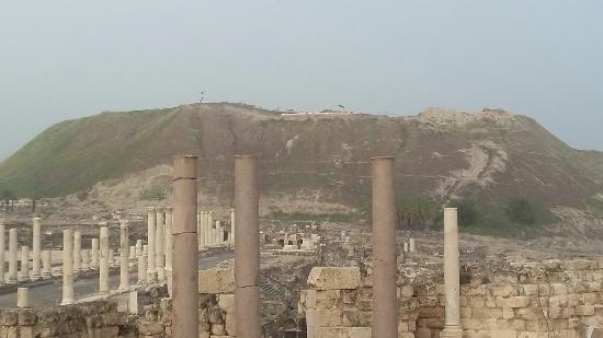 Beit She'an, Israel: סיור מודרך בעמק המעינות בית שאן עם אפי נחמיאס בגוגל www.efitours.co.il