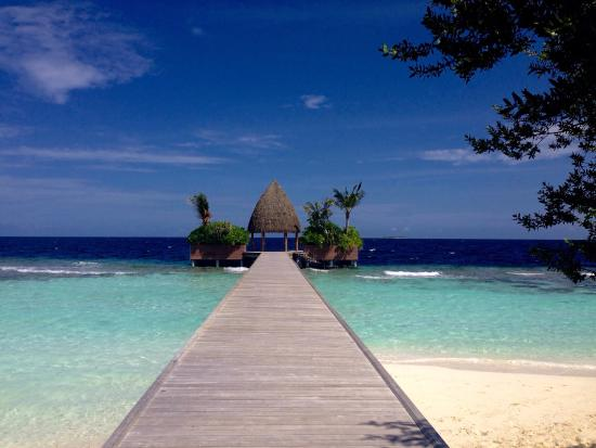 North Ari Atoll: photo0.jpg