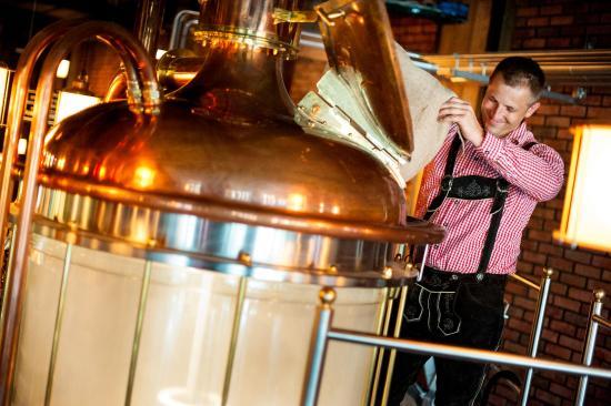 Nowy Sacz, Polonia: piwowar