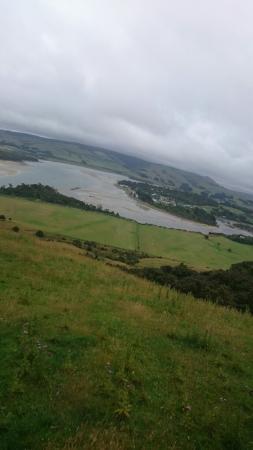 Owaka, Neuseeland: DSC_0501_large.jpg