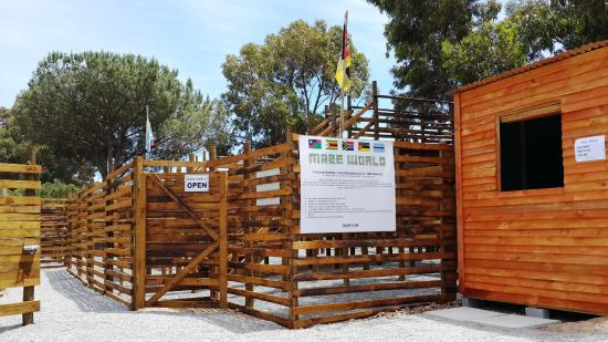 Kommetjie, Южная Африка: The Safari Maze at Imhoff Farm is Educational, Informative and fun!