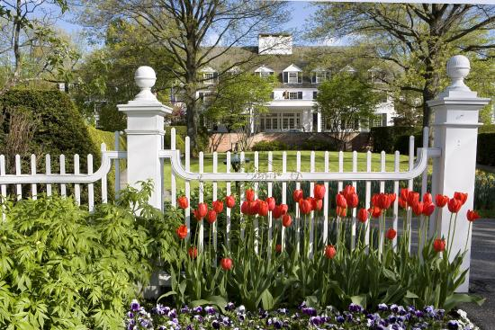 Woodstock Inn and Resort: Front Of Inn Spring Tulips