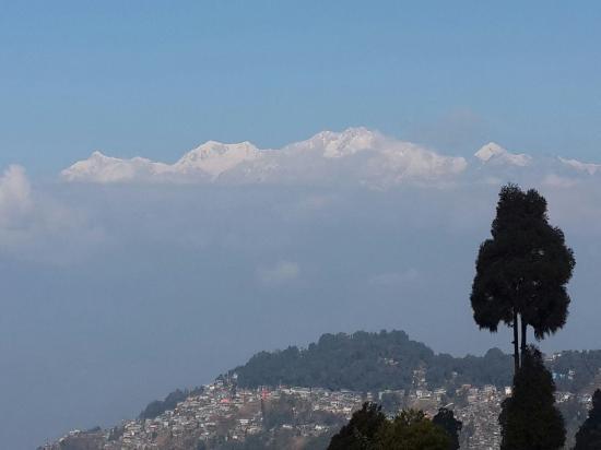 Sinclairs Darjeeling-billede