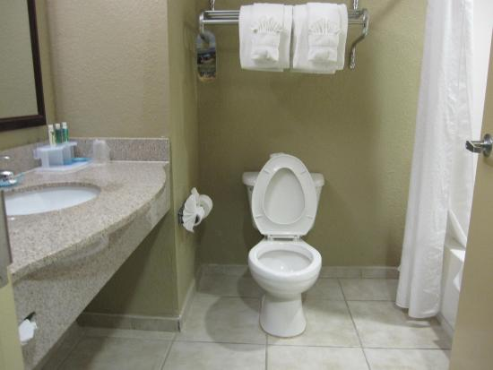 Holiday Inn Express & Suites West Palm Beach Metrocentre Photo