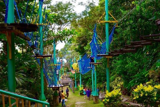 Picture Of Mountain View Nature S Park Cebu City Tripadvisor