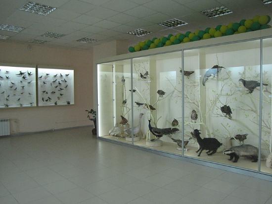Museum of Nature