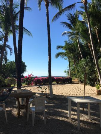 Hotel La Laguna del cocodrilo: The resident iguana,the amazing tamarindo sunsets,and the feeling of isolation.....Pura vida