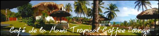Paraiso, Доминикана: Suitte y jardines