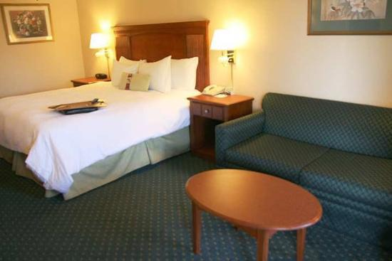 Econo Lodge : Guest Room