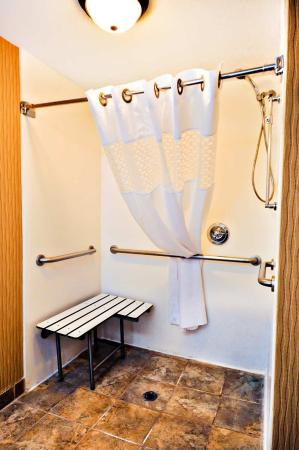 Carrollton, KY: Accessible Roll In Shower
