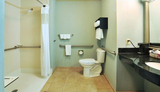 Hampton Inn Gadsden / Attalla: Bathroom