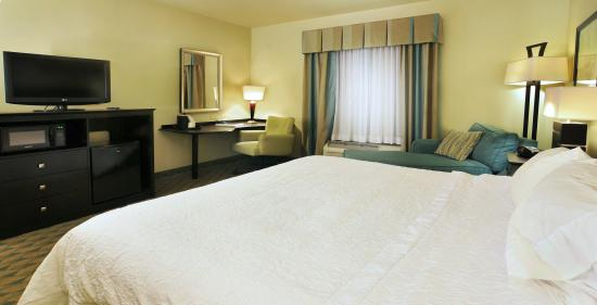 Hampton Inn Gadsden / Attalla: King Bedroom