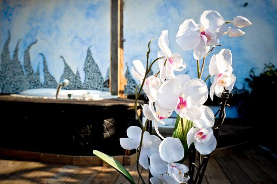 Hotel Residence Veliero : terrazzo idro