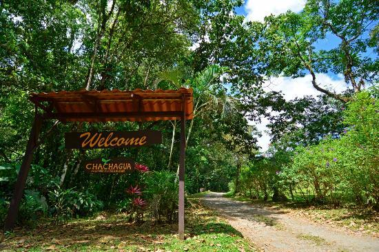 Chachagua, كوستاريكا: Welcome!