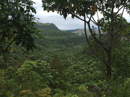 Mt. Tarawera: photo1.jpg