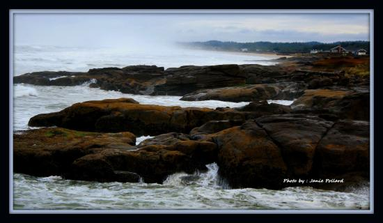 Yachats coastline Photo