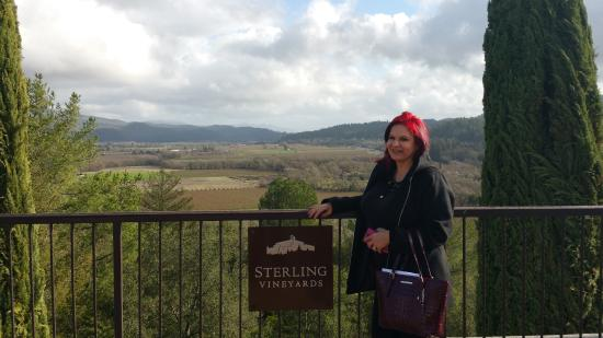 Foto Sterling Vineyards