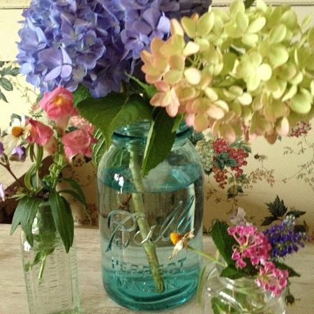 Manasquan, Nueva Jersey: Flowers from our garden