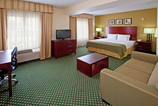 Holiday Inn Express and Suites Indianapolis East: King Bed Guest Room