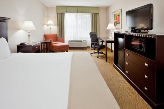 Kinston, Carolina del Norte: King Bed Guest Room