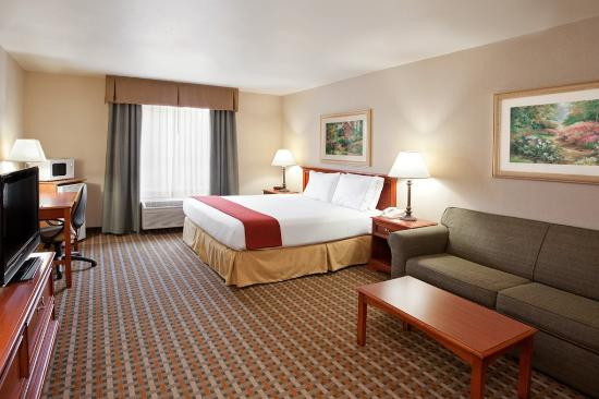Holiday Inn Express & Suites Columbus Southeast: Single Bed Guest Room