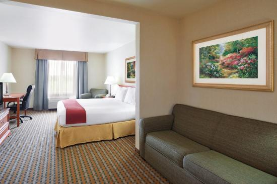 Holiday Inn Express & Suites Columbus Southeast: Deluxe Room