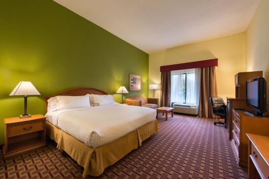 Holiday Inn Express Hotel & Suites - Veteran's Expressway: Business Class King Guest Room