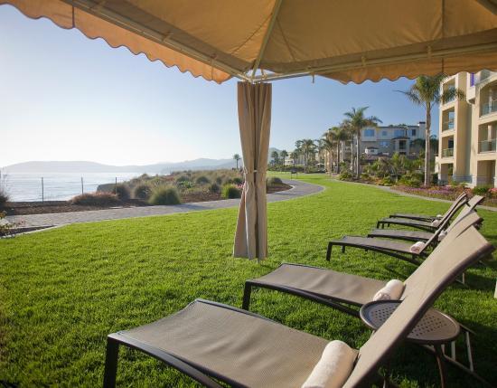 Dolphin Bay Resort & Spa: Canopy