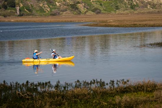 Balboa Bay Resort: Kayaking In Back Bay