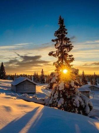 Harju County, إستونيا: Мыза Маарду