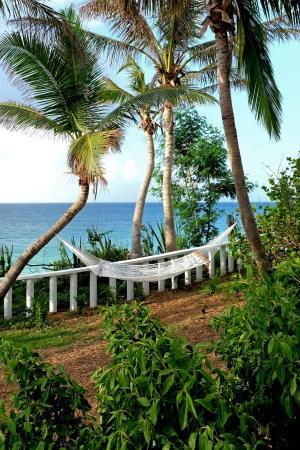 West End Village, Anguila:  Hammock