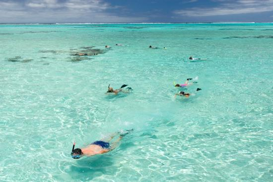 West End Village, Anguilla: Snorkeling in Anguilla's Turquoise Waters