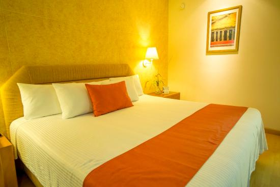 Comfort Inn Monterrey Norte: Guest room with one bed